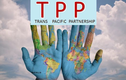 Trans Pacific Partnership A Brief Introduction And The